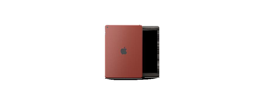iPad Air 2 Skin